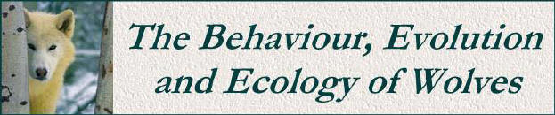 Behaviour, Evolution & Ecology of Wolves / Jessie Zgurski